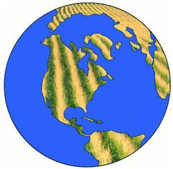 global corn