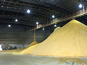 http://www.zimmcomm.biz/images/corn/distillers-grains.jpg