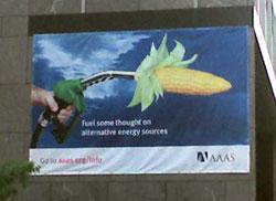 AAAS Building Banner