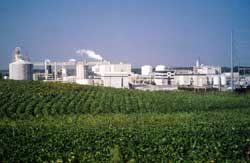 Cargill Plant