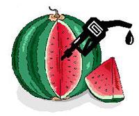 Melon Ethanol