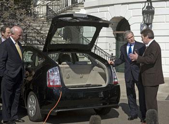 Bush and Car