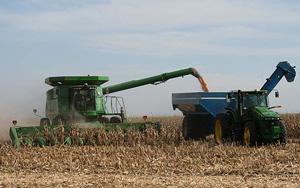 Deere Cob Harvest