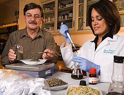 USDA ARS Biomass Research